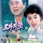 NK film